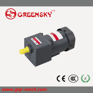 GS High Efficient High Torque 110~220V 6W~120W 90mm AC Induction Motor pictures & photos