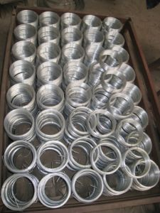 Galvanized Iron Wire Iron Tie Wire Galvanized Wire pictures & photos