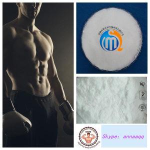 99% High Purity Androstendio Powder Prohormones Bodybuilding pictures & photos