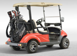 EEC Approved China Made 2 Seat Battery Powered Electric Aluminum Golf Car pictures & photos