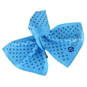 Pure Natural Silk Lady Gentlemen Neckwear Classic Light Blue Logo Printed Scarf pictures & photos