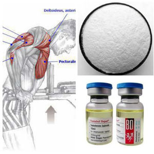 Stop Muscle Wasting Hormone Raw Powder Steroid Test Enanthate pictures & photos