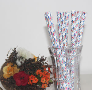 Party Wedding Household Supply Fat Paper Straw pictures & photos