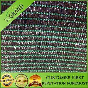 100% HDPE Sun Shade Net / Shade Sail / Mesh Netting (manufacturer) pictures & photos