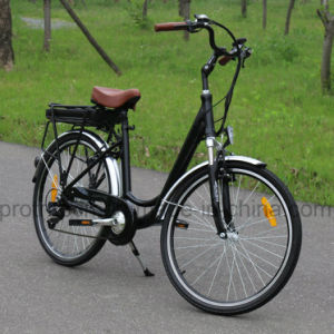 250W Electric City Bicycle with Brushless Motor pictures & photos