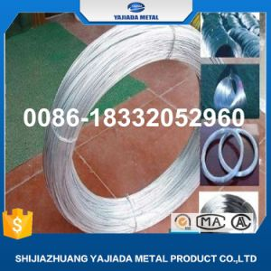 Hot Sale/22 Gauge Gi Binding Wire pictures & photos