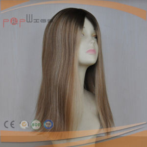 100% Human Virgin Remy Hair Wig (PPG-l-0142) pictures & photos