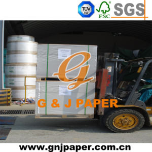 250-450g Hardness Coated Duplex Paper in Sheet pictures & photos