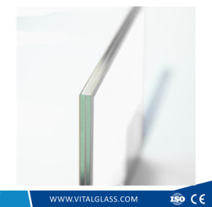 Dark Grey/Blue Laminated Glass for Building Glass (L-M) pictures & photos