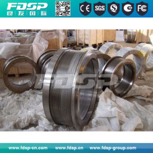 Customized Granulator Pellet Mill Matrix Spare Part Ring Die pictures & photos