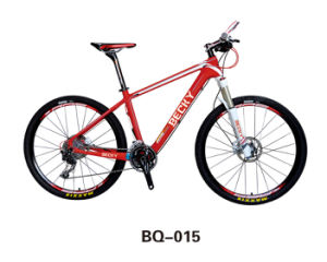 Electric Mountain MTB Bike Middle Motor Electric Bicycle Mail: PS@Beiqicheye. COM pictures & photos