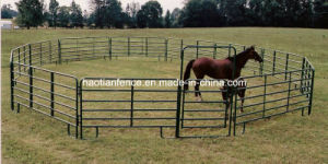6 Rails Livestock Panel/Cattle Panel/Corral Panel pictures & photos
