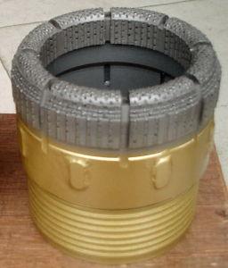 T6s-76 T6s-86 T6s-101 T6s-116 T6s-131 Diamond Core Drill Bit pictures & photos