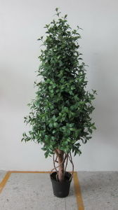 High Quality Artificial Plants and Flowers of Gu-Mx-Olive-180cm pictures & photos