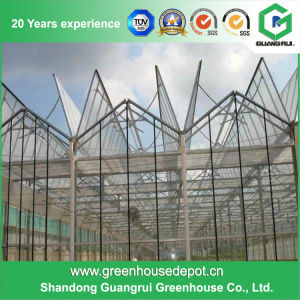 China Supplier Low Cost Glass Greenhouse for Commercial Use pictures & photos