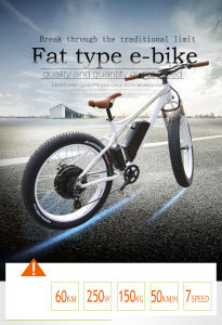 Chinese Best Mountain PAS Electric Fat Bike for Europe Sale pictures & photos
