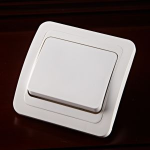 SGS ABS Two Way Wall Switch (2023F) pictures & photos