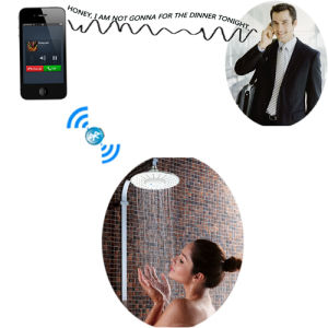 Bathroom Audio Shower Head with Wireless Bluetooth Speaker pictures & photos