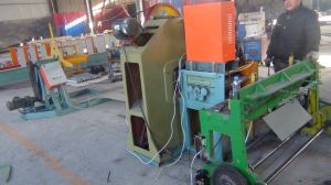 Steel Sheet Punching Roll Forming Machine pictures & photos