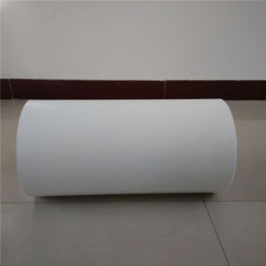 Hay Protective Film Manufacturer pictures & photos