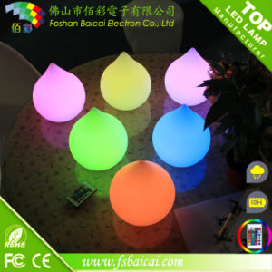 LED Decorative Light pictures & photos