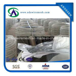 Hot Sale! ! ! Bto Cbt Type Concertina Razor Wire pictures & photos