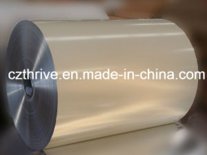 Aluminum Coil/Sheet pictures & photos