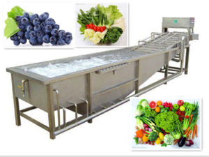 Trustworthy Product Commercial Vegetable Fruit Washer pictures & photos