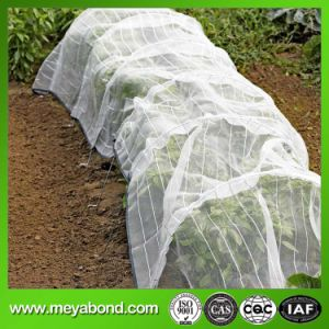 Agriculture Low Channel in Japan Anti Insect Net pictures & photos