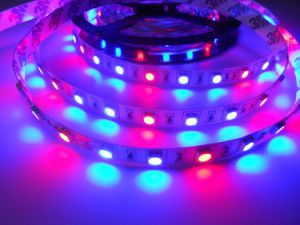 5050 60LED High Luminosity 24V R: B=1: 2 LED Grow Strip pictures & photos
