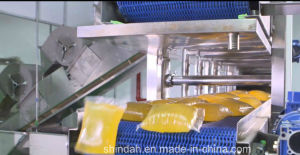 Full Automatic Psa/Hma Pillow Shape Packing Line pictures & photos