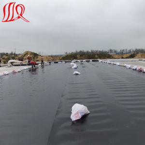 Smooth HDPE Geomembrane for Pond Liner pictures & photos