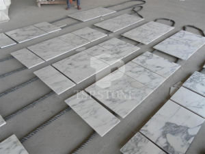 Arabescato Venato White Marble Tile pictures & photos