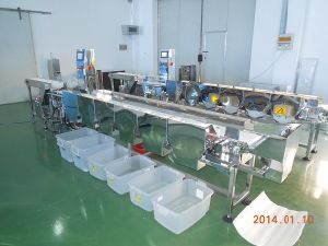 Sea Food Online Weight Sorting Machine pictures & photos