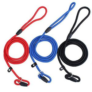 Pet Dog Nylon Rope Training Leash Slip Lead Strap Adjustable Traction Collar pictures & photos