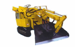 Track Type Crawler Loader pictures & photos