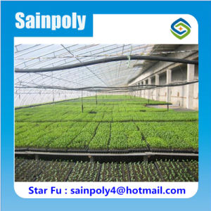 China Supplier Shading Covering Solar Greenhouse for Vegetable pictures & photos