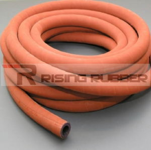 High Temperature High Pressure Steam Rubber Hose Hot Water Hose pictures & photos