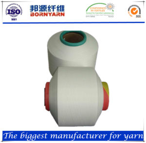 Air Covered Yarn Spandex20d+Nylon20d pictures & photos