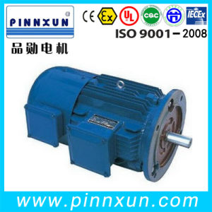 Yvf Series Variable Frequency/Speed Electric AC Induction Motor pictures & photos