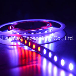 SMD5050 IC2811 Dream Color LED Strips Light Magic Tape Light pictures & photos
