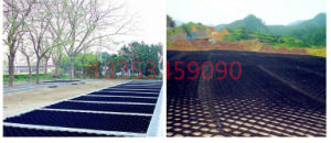 Hiagh Quality HDPE Geocell with Ce Certificate, Factory Price pictures & photos