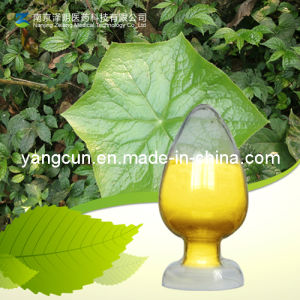 Quercetin CAS No: 117-39-5 pictures & photos