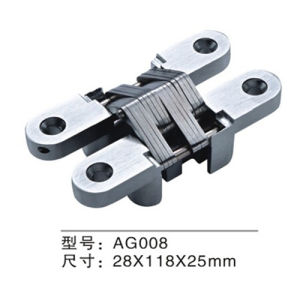High Quality Zinc Alloy Concealed Door Hinge (AG008) pictures & photos