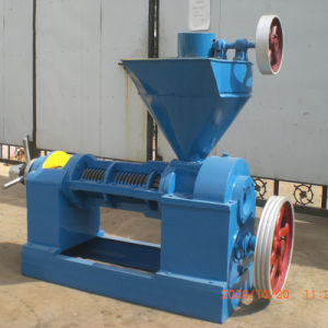 Diesel Generated Cotton Seeds Oil Press pictures & photos