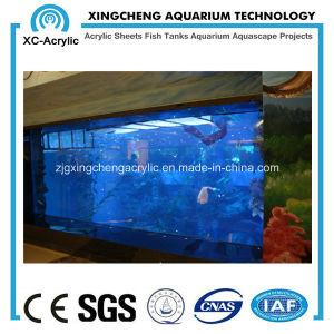 Acrylic / PMMA / Plexiglass Sheet for Aquarium pictures & photos