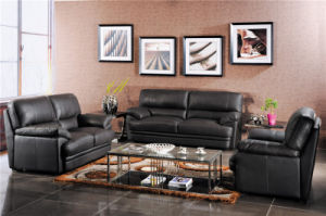 Home Sofa Special Design Furniture pictures & photos