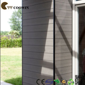 Exterior Deco High Quality Wall Panel WPC Material pictures & photos