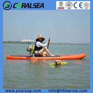"Dragon Boat Paddle Surfing Board (swoosh 10′6"") pictures & photos"