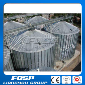 Used in Wheat Flour Mill Assembly Silos Price pictures & photos